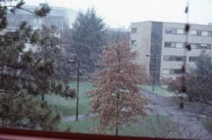 HLS 1975-8  3rd-photo