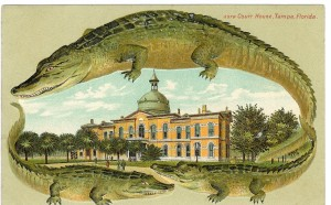 Tampa 1892 Alligator Border
